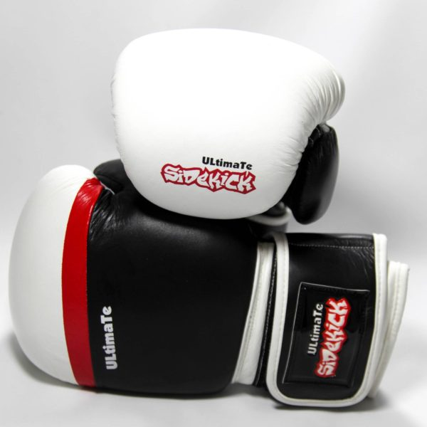 Ultimate 2.0 Boxing Gloves