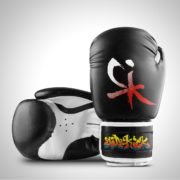 Samurai Series Boxing Gloves