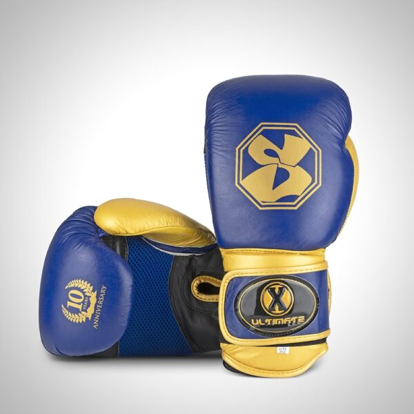 Ultimate X Boxing Gloves Blue