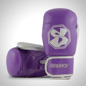 Purple Boxing Gloves 6oz 10oz